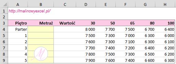 Excel w nieruchomościach -formatka